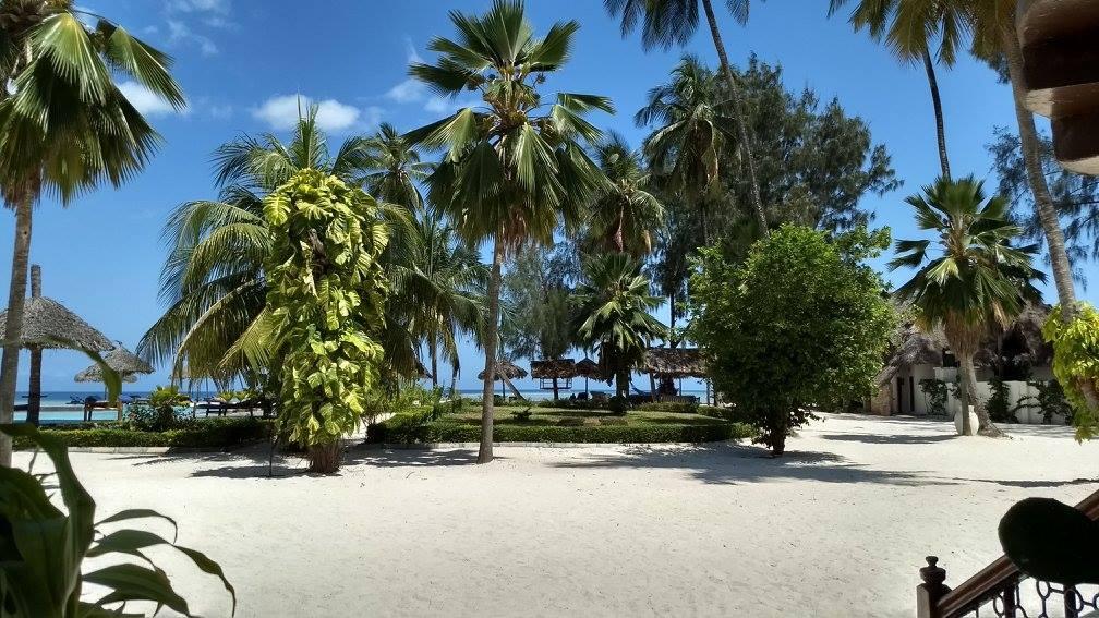 Uitzicht tuin hotel Zanzibar