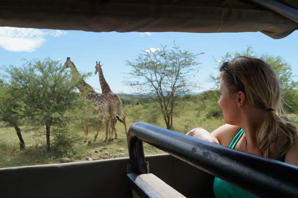 Safari, giraffes spotten, Zuid-Afrika